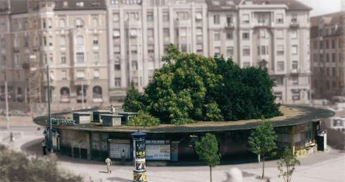 Gomba a Móriczon - forrás: építészfórum