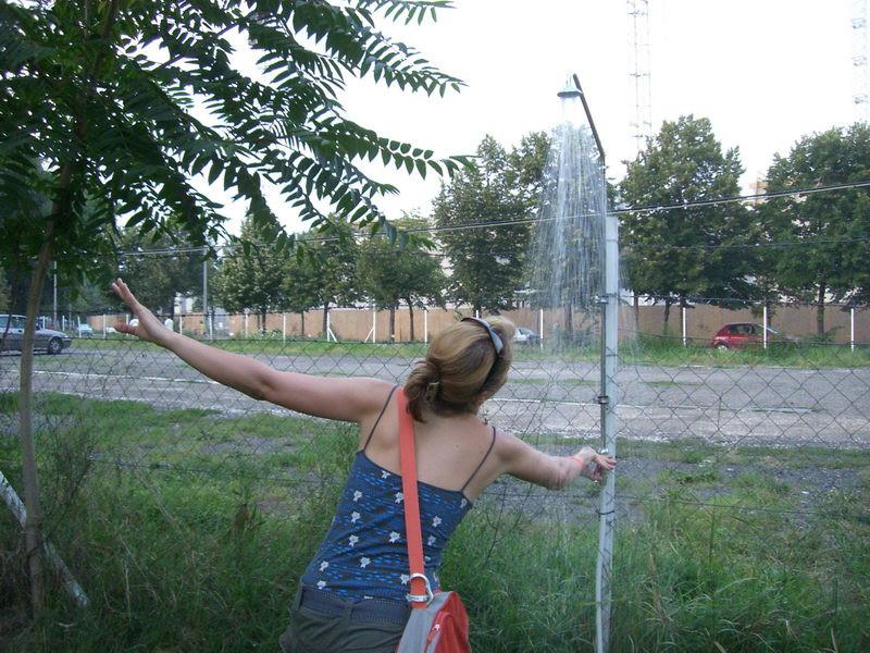 Zuhanyrózsák