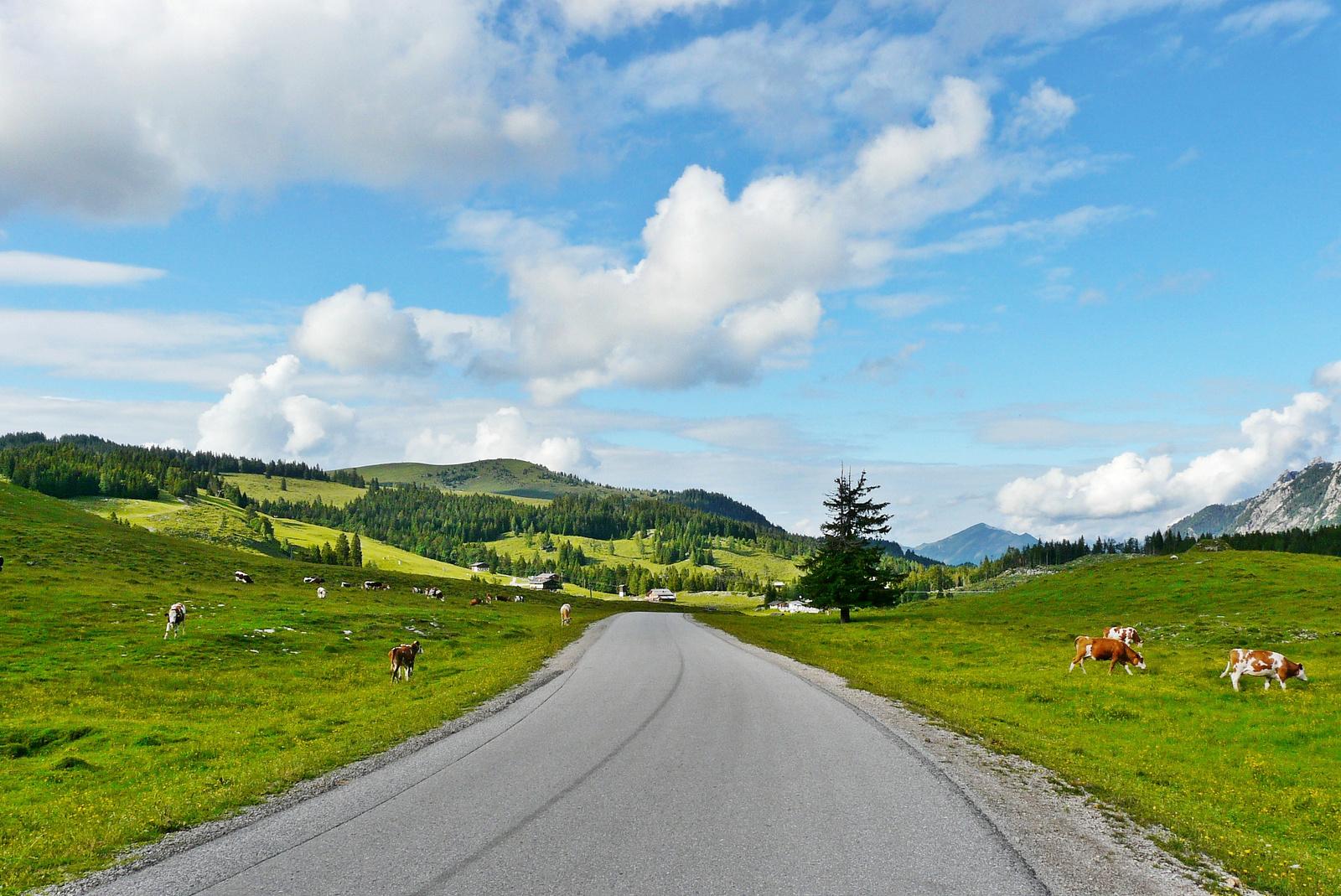 Postalmstrasse Abtenau